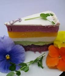 rainbow 1 sherbet slice