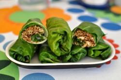 raw-vegan-rolls