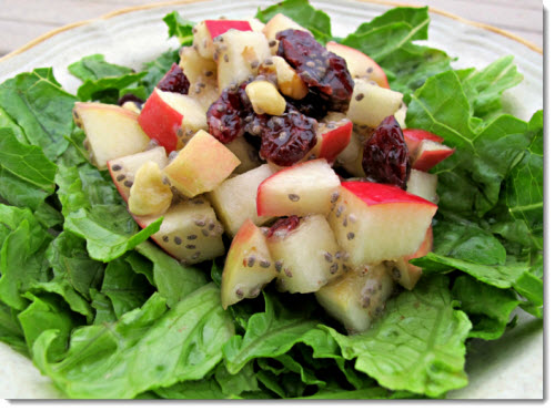 vegan-thanksgiving-waldorf-salad-rambling-vegans-flickr